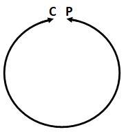 P-C Circle